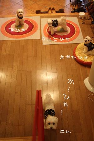 8_14_0060.jpg