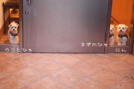 8_14_0088.jpg