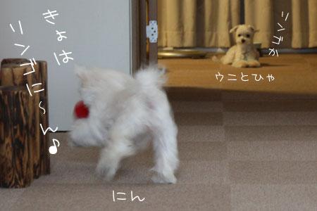 8_20_0708.jpg