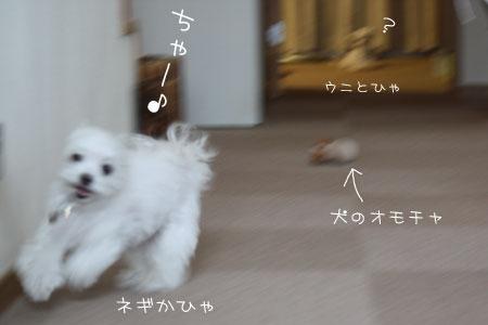 8_20_0719.jpg
