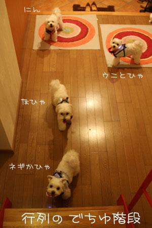 8_20_0901.jpg