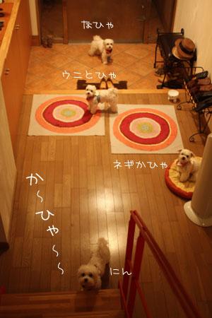 8_23_1092.jpg