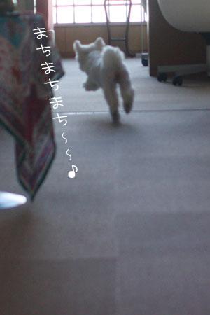 8_25_4538.jpg