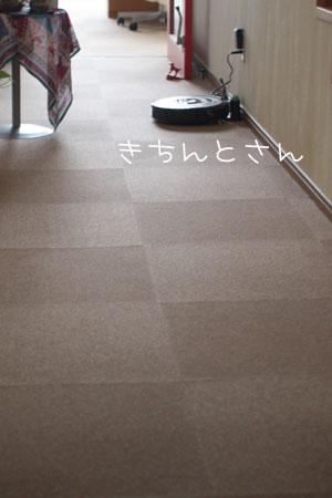 8_8_3806.jpg