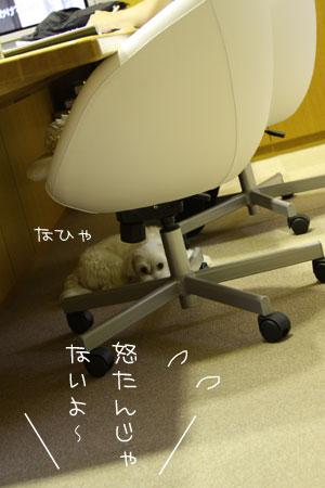 8_9_9668.jpg
