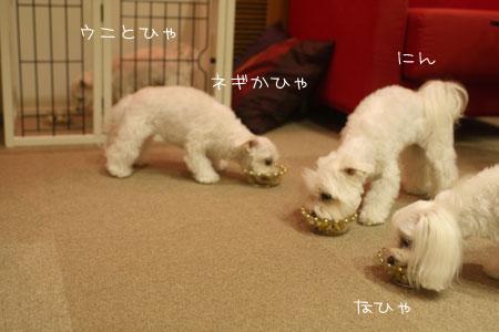 9_10_5448.jpg
