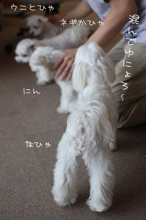 9_14_2782.jpg