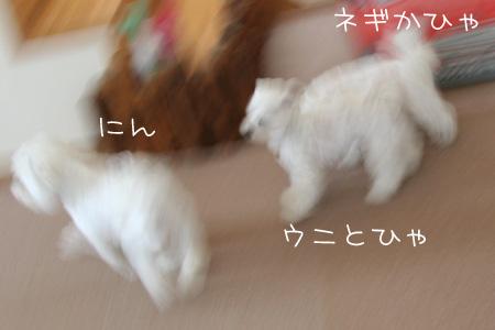 9_15_8451.jpg