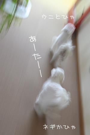9_15_8458.jpg