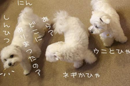 9_15_8467.jpg