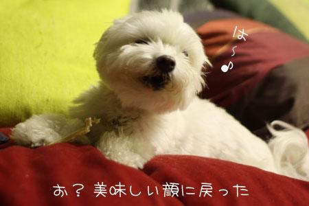 9_16_3106.jpg