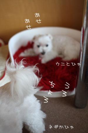 9_17_3232.jpg