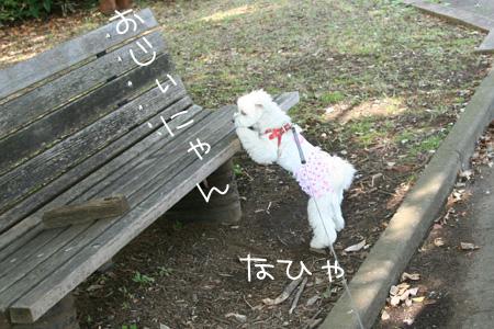 9_17_8711.jpg