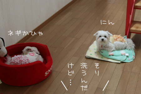 9_17_8713.jpg