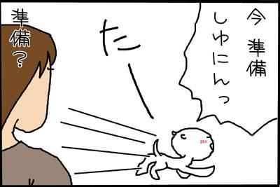9_2.jpg