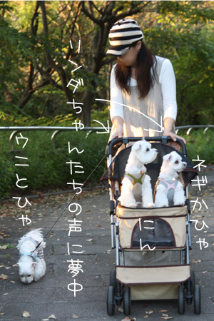 9_25_3926.jpg