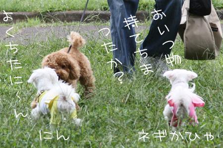9_26_4005.jpg