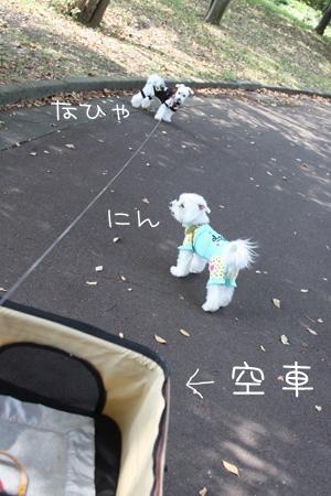 9_28_4308.jpg