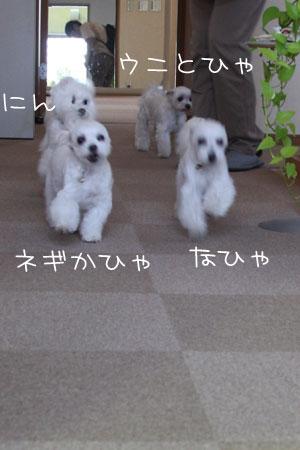 9_28_4324.jpg