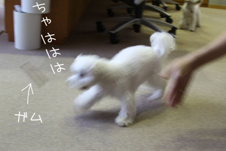 9_28_4344.jpg