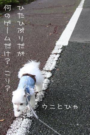 9_29_7620.jpg