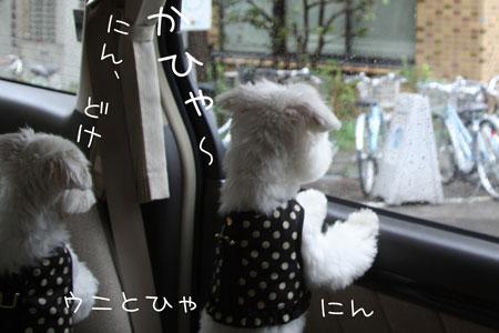 9_30_4478.jpg