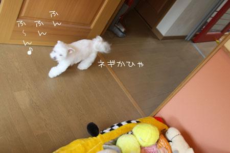 9_30_7601.jpg