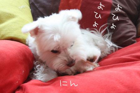 9_30_7836.jpg
