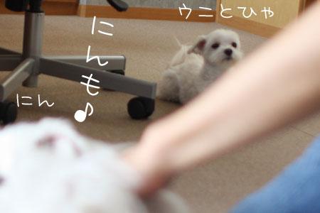 9_7_2222.jpg