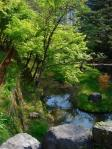 高山への途中立ち寄った孝子が池
