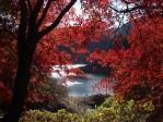 上矢作 ダム湖がもみじの紅葉がいいって知ってた?