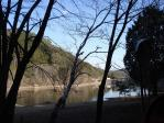 岩村ダム湖