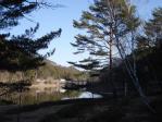 岩村キャンプ場近辺