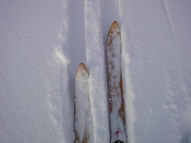 高性能スキー