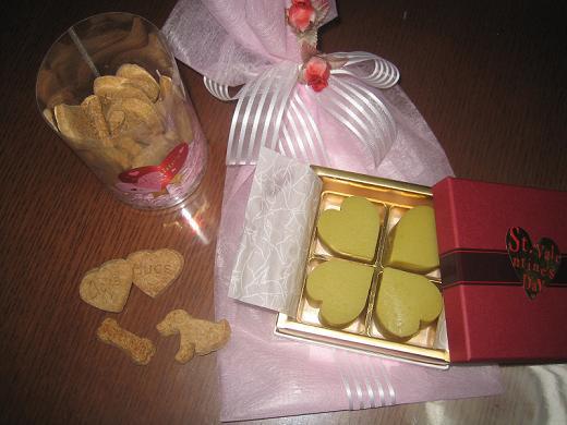 チッチ君にバレンタインデイのプレゼント