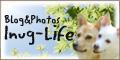 inug-life-banner