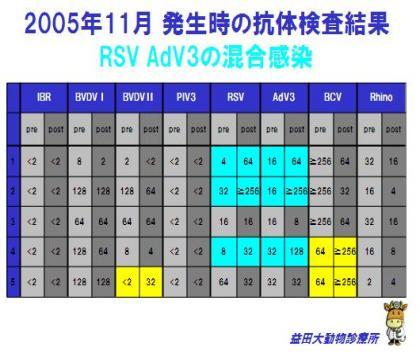 4_convert_20111024150735.jpg