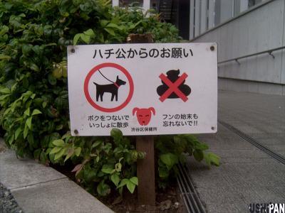 約束の犬?