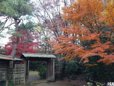 三楽の森1