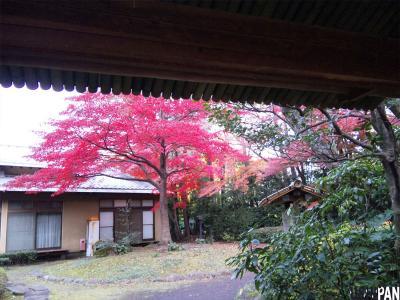 三楽の森2