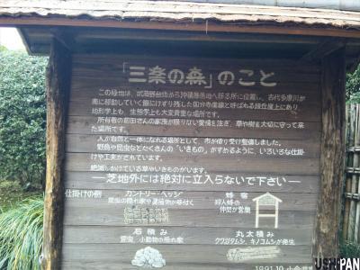 三楽の森3