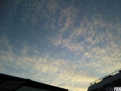 ウロコ雲2