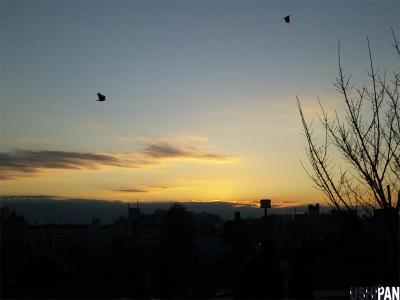 西郷山公園の夕暮れ2