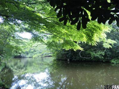 和田掘公園1