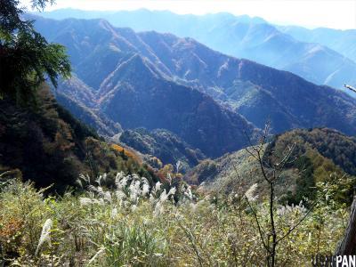 武甲山下り2