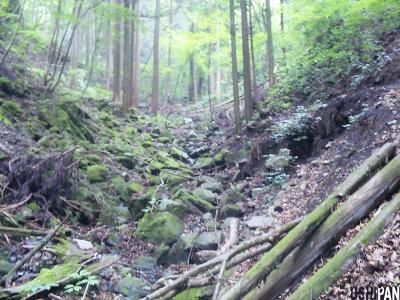 高畑山倉岳山7
