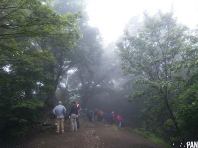 伊豆ヶ岳3
