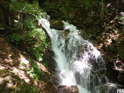 滝子山06