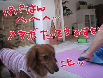 blog 09091604