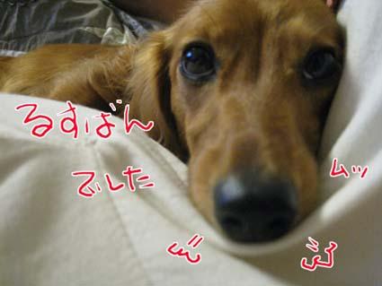 blog 09091804